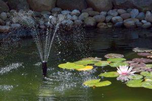 Anwendungsbeispiel - Eine Solarteichpumpe eingesetzt als Springbrunnenpumpe um ein Wasserspiel zu erzeugen